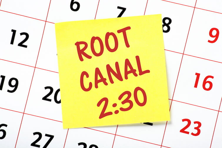 Why are People Afraid of Root Canals?